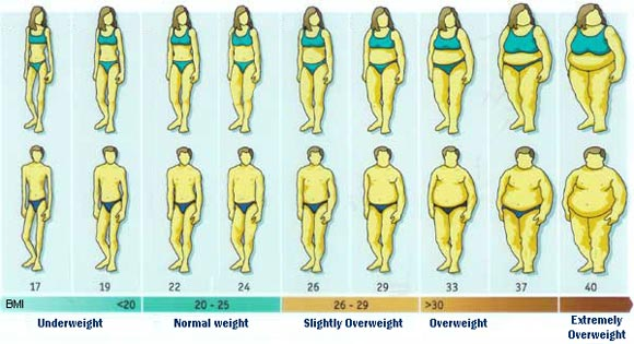 how to tell your bmi